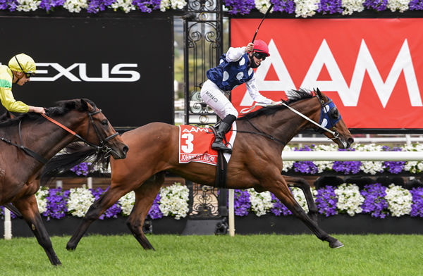 Johnny Get Angry (NZ) wins the G1 Victoria Derby - image Racing Photos