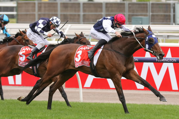 Victoria Derby hero Johnny Get Angry has a half-brother by Almanzor in Karaka 2021 - click to see his page.