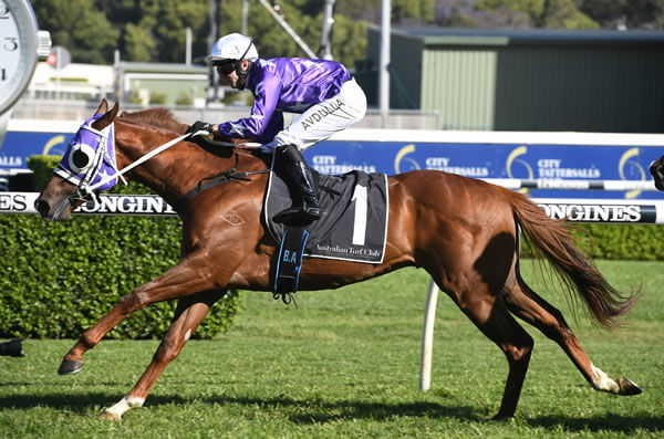 Kubrick wins the $1million Bondi Stakes - images Steve Hart