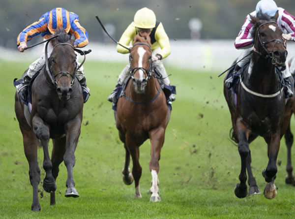 Lipizzaner (on the left) wins the Doncaster Stakes - image Coolmore Twitter