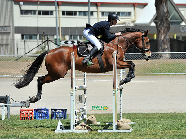 Lenny is jumping competitively in the 90 -1m classes