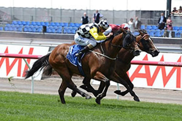 Lunar Rise wins the 2012 G3 Carbine Club Stakes at Flemington on Derby Day