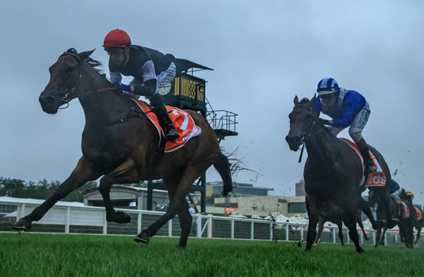 Mildred wins the Chairmans Stakes - image Grant Courtney