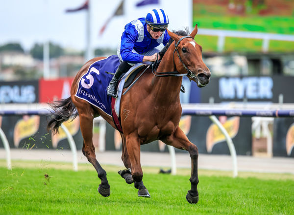 All alone, Minhaaj stakes her claim for the Golden Slipper image Grant Courtney