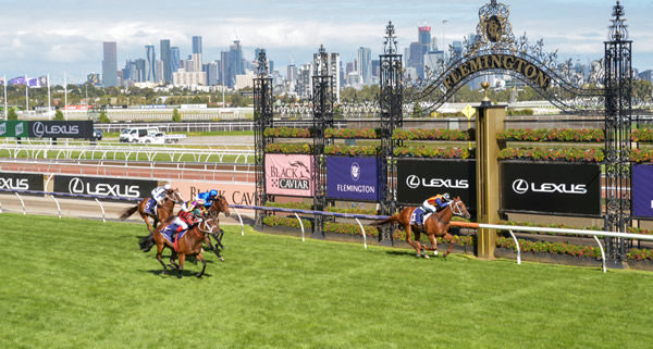 Nature Strip gets there first - image Reg Ryan/ Racing Photos.