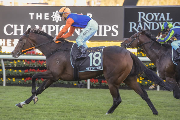 Doncaster winner Nettoyer was bought for $20,000 at Inglis Easter