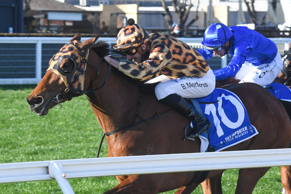 No Effort wins the Listed Heatherlie Stakes - image Racing Photos.
