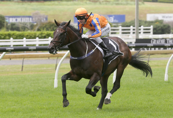 On the Bubbles has won two from two and is a leading contender for the Karaka Million - image Trish Dunell/