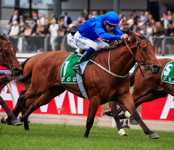 Godolphin have announced the retirement of Osborne Bulls