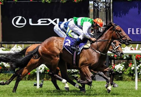 O'Tauto is a homebred for Larneuk Stud chasing the $500,000 Melbourne Cup Country Final next week