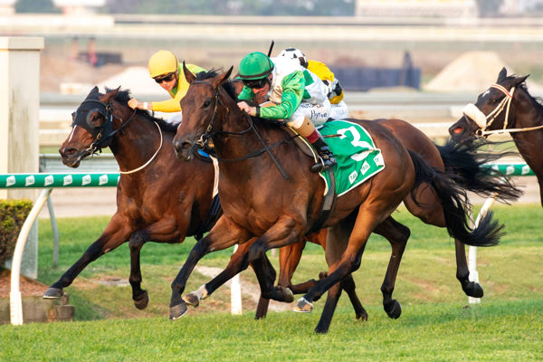 Outback Barbie Earns her third stakes win
