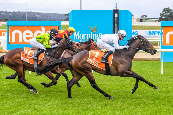 Piccadilly Waltz made a winning debut at Mornington (Race Photos)