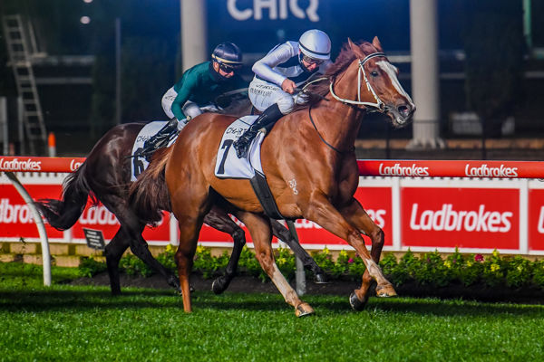 Pippie wins the G1 Moir Stakes - image Racing Photos