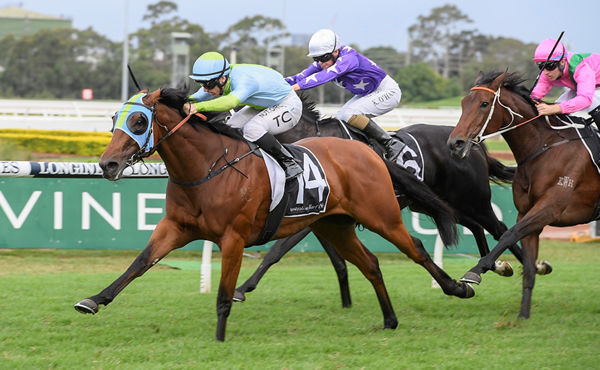 Positive Peace wins the G2 Emancipation Stakes - image Steve Hart