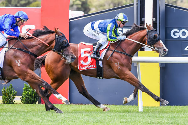 Mission completed. Predetermined breaks his maiden under Jamie Kah (image (Pat Scala/Racing Photos)