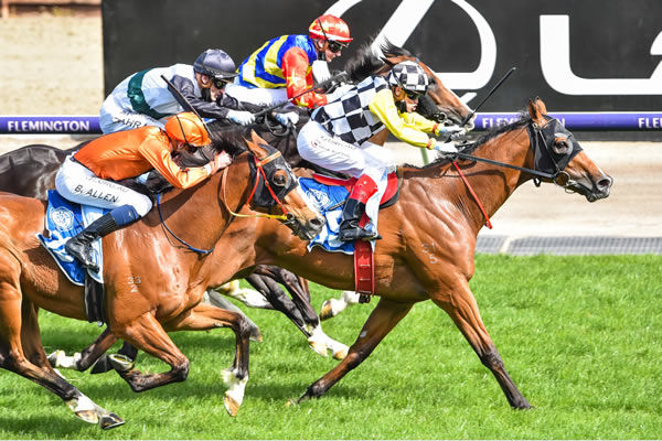 Purple Sector wins in the colours of the late Dato Tan Chin Nam's Think Big Stud - Racing Photos.