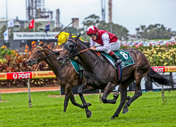 Purple defeats Gold Water in the Arrowfield Stud Stakes (Mark Smith)