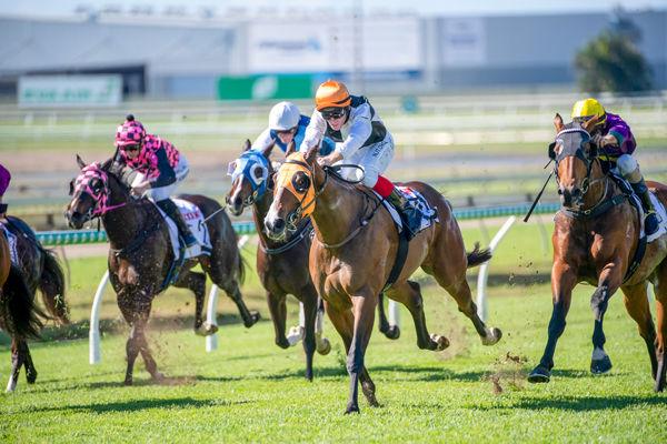 Queen Sweeper (Racing QLD)