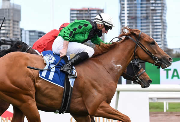 Riddle Me That wins the Listed VRC Paris Lane Stakes - image Pat Scala / Racing Photos