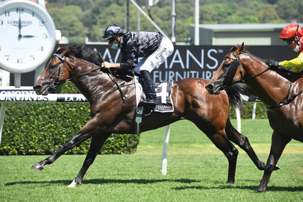 Rocketing By wins at Randwick - image Steve Hart.