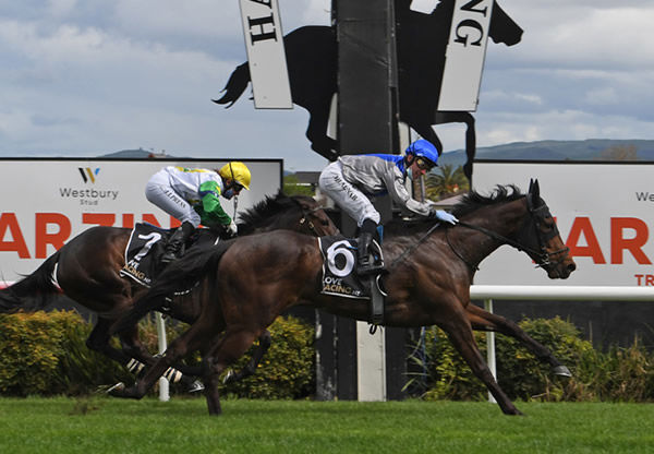 Sakura Blossom (left) gets the better of Alchemia to complete a remarkable victory at Hastings Photo Credit: Race Images – Peter Rubery