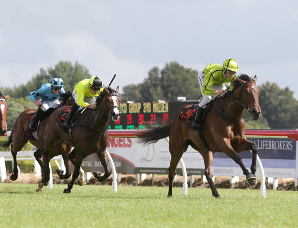 Samina Bibi winning at Te Rapa on Wednesday. Photo: Trish Dunell