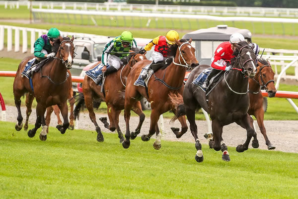 Sam Weatherley pushes Sensei to the front as they head for the winning post at Riccarton. Photo: Race Images South