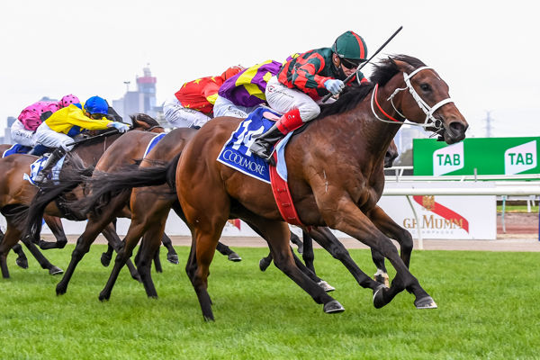 September Run gave the colts a galloping lesson in the Coolmore - Racing Photos.