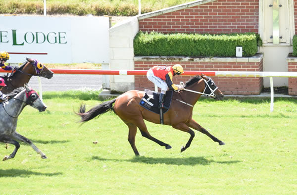 Sheezallmine takes out the Listed Alleviate Administration Hazlett Stakes (1200m) Photo: Tayler Strong