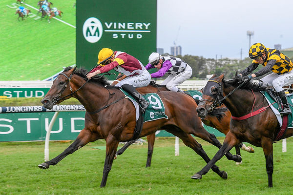 Shout The Bar wins the Vinery Stud Stakes (Steve Hart)
