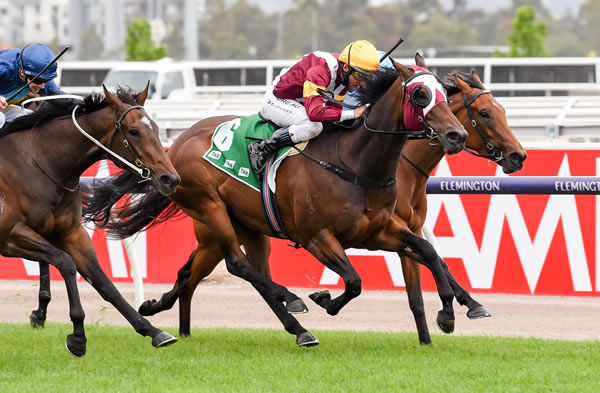 Shout the Bar edges out Odeum in the G1 Empire Rose - image Racing Photos.