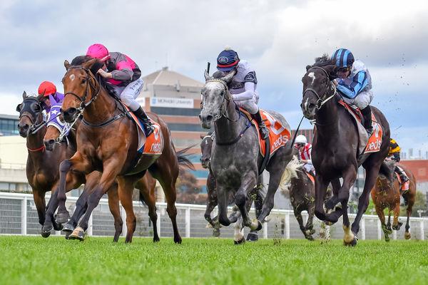 Sirileo Miss strides to the lead (image Reg Ryan/Racing Photos)