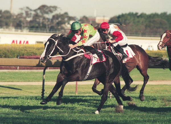 Slight Chance wins her final race the G2 Hill Stakes - image Steve Hart.