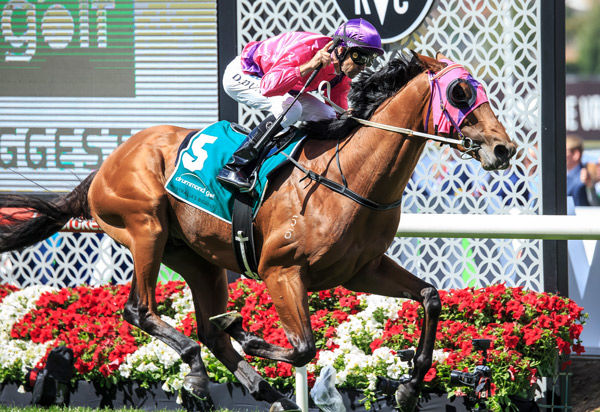Soul Patch a class above in Moonee Valley Vase