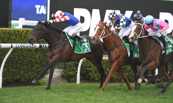 Spaceboy wins wins his third race in a row when scoring at Randwick - image Steve Hart