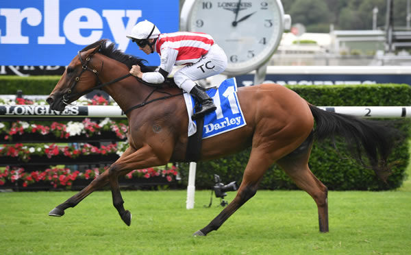 Supreme Idea wins the Lonhro Plate - image Steve Hart