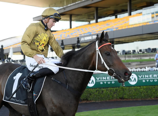 Tactical Advantage carried the ANZAC colours