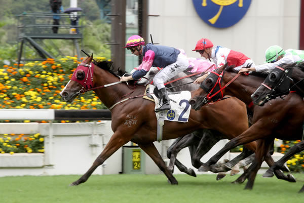 Thanks Forever wins the G3 Sha Tin Vase - image HKJC
