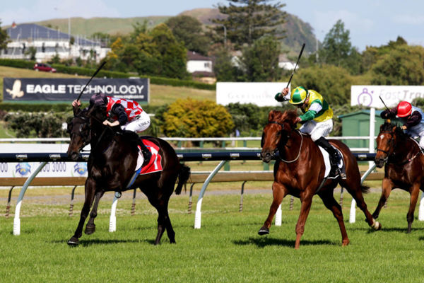The Mitigator (inner) gains his first victory at stakes level in the Gr.3 Eagle Technology Stakes (1600m) at Ellerslie Photo: Trish Dunell