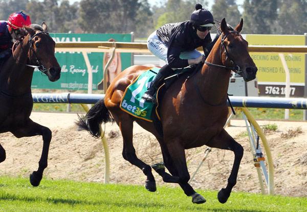 Token Spirit wins at Benalla - image David Thorpe / Racing Photos