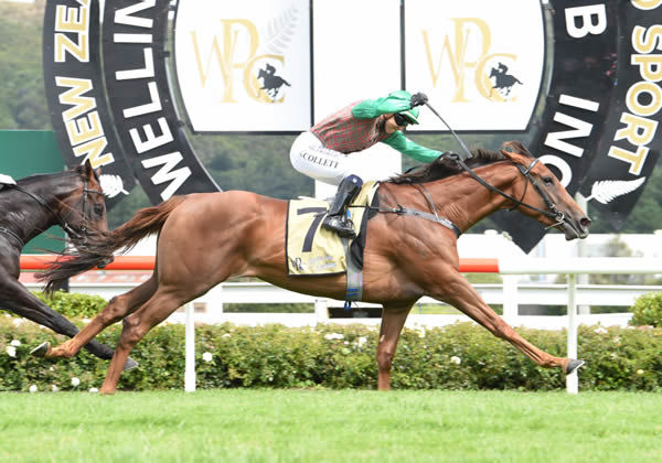 Travelling Lights wins the G1 Levin Classic - Race Images