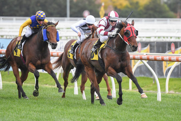 Vainstream powers home under Noel Callow - image Racing Photos