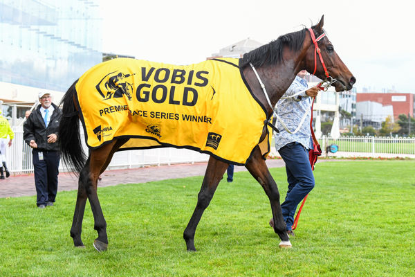 VOBIS poster boy Vainstream - image Racing Photos