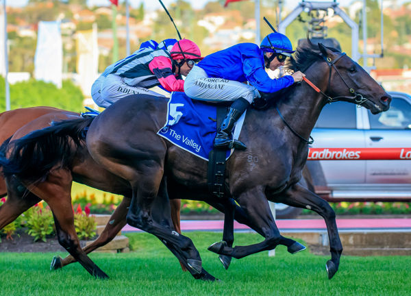 Valaquenta finishes strongly to make a winning debut - images Grant Courtney