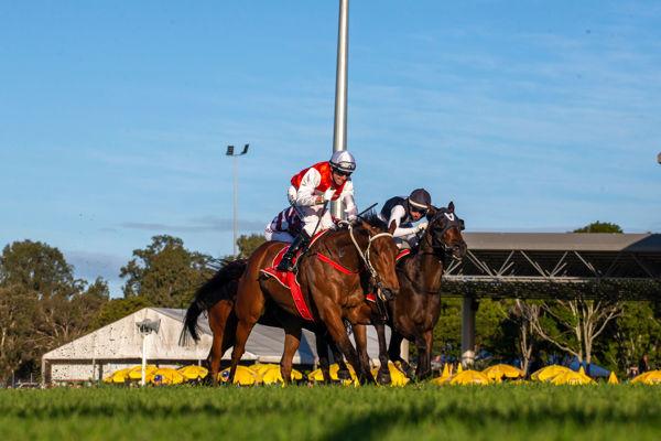 Wapiti rallies to claim the Winx guineas (Racing Queensland)