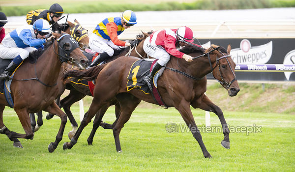 Wester Empire at full stretch in WA Derby (image Western Racepix twitter)