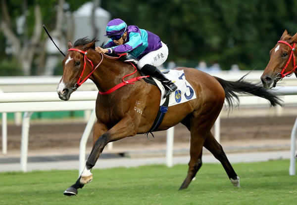 Winning Dreamer is a HK star for Deep Field - read about him here.