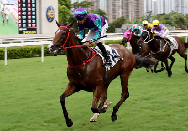 Winning Dreamer made it two for two at Sha Tin on Wednesday - image HKJC