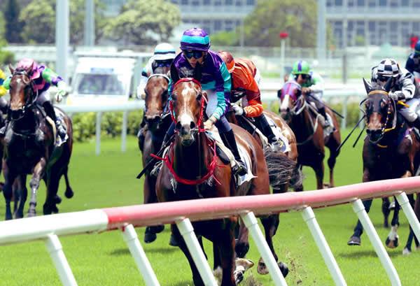 Winning Dreamer wins easily on debut - HKJC