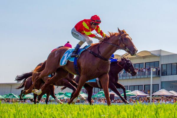 Headwater's Wisdom Of Water breaks through at the Gold Coast - Racing QLD